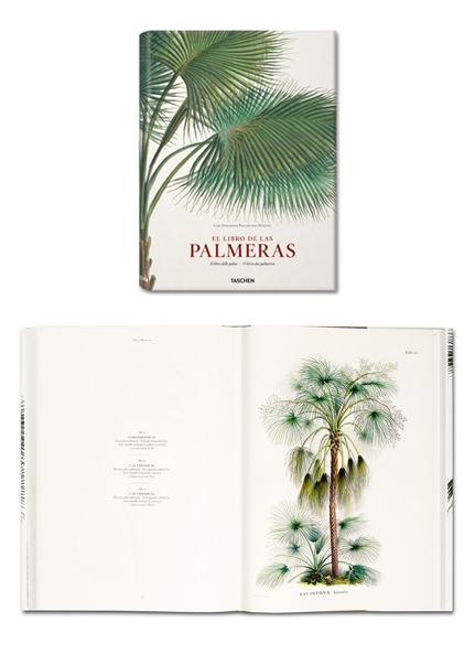 Palm Trees by Taschen