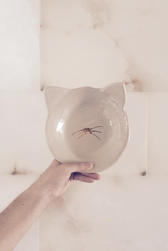 Bonjour detalle ceramica