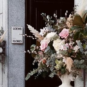 Flower Shop Loewe,Madrid
